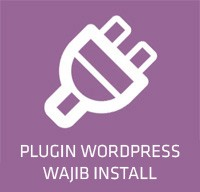 plugin wordpress wajib install