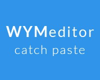 catch paste from word wymeditor